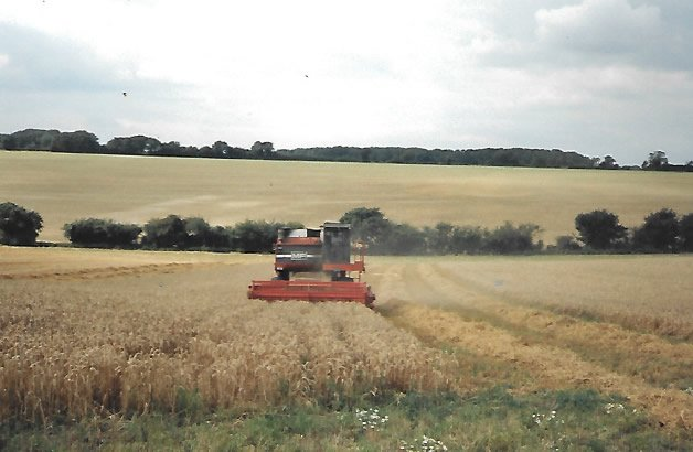 Hay & Straw Supplier in Hertfordshire
